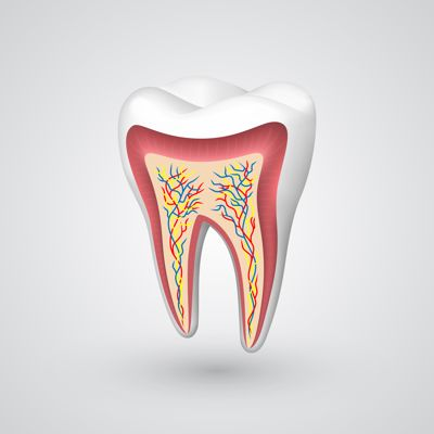 Sunrise Dental Root Canal Therapy Endodontics